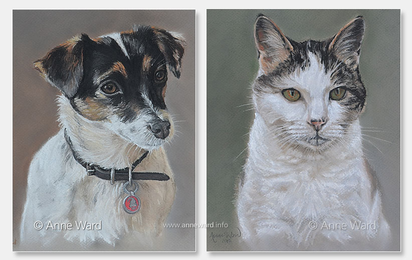 Anne Ward artist Jack Russell and cat portraits